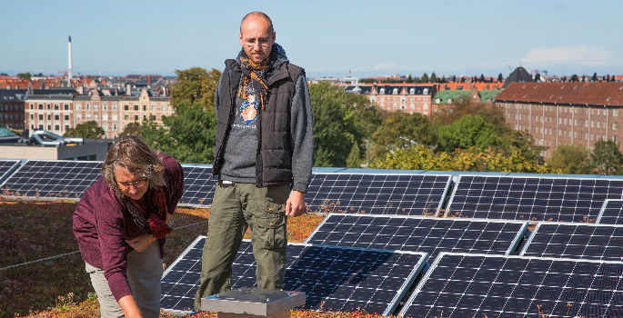 solar-cells-and-the-green-roofs-of-the-new-food-building-at-frederiksberg-campus-1423672938